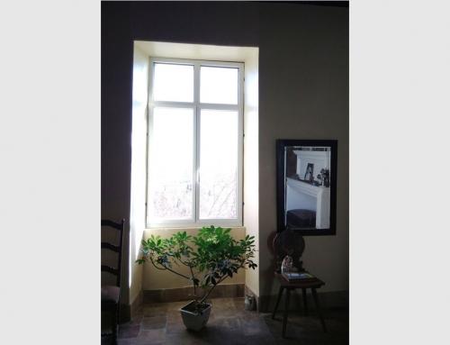 Fenêtre en aluminium avec faux meneau